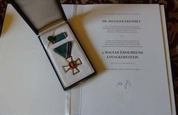 Magyar Érdemrend kitüntetések